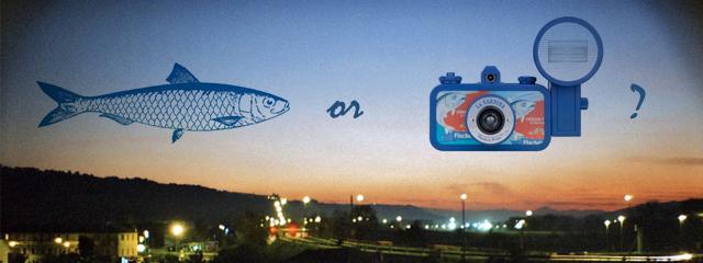 sardina lomography